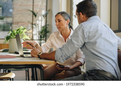Woman and man working on project at office desk. Coworkers using laptop and discussing work in office.