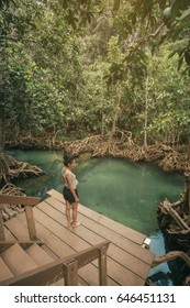Woman in Mangrove forest at Tha Pom Khlong Song Nam Krabi,Thailand