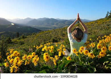 Woman meditating in medows with sunflowers Arnica. Seattle. Leavenworth. Washington State. United States of America.