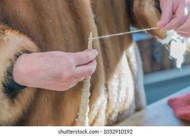 woman in mink coat  weaves a spindle