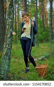 A woman with a mobile phone, looking for mushrooms in the forest.