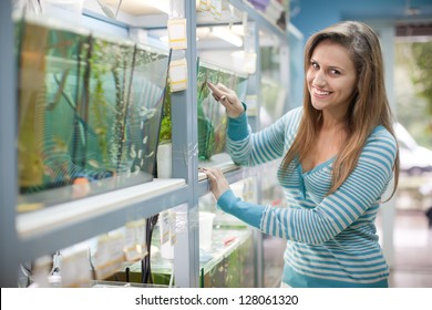Woman near aquariums with fishes in petshop