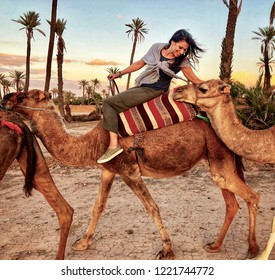 A woman on a camel leans back to caress the camel behind her in a scenic camel train at sunset in the desert outside of Marrakech, Morocco
