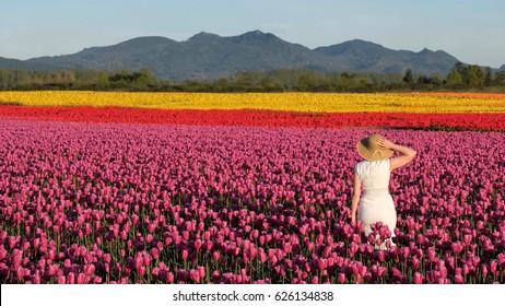 Woman on colourful tulip fields. Skagit Valley Tulip Festival. Seattle. Mount Vernon. WA. United States.