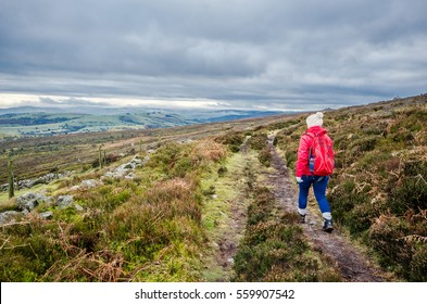 Woman on the Stiperstones hills in the county of Shropshire, England. Female Hiker walking along a moorland path.