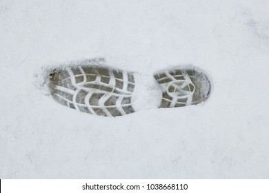 Woman paw in the snow
