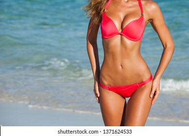 Woman with perfect body in bikini over tropical sea background