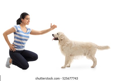 Woman petting a dog isolated on white background