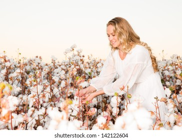 Woman Picking a Cotton Boll from a Field of Cotton