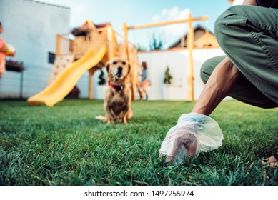 Woman picking up dog poop from the lawn at the backyard
