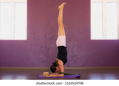 Woman in pincha mayurasana on purple wall studio. Female yogi on feathered peacock pose on mat with belt and block props. Forearm, elbow balance, alignment concepts