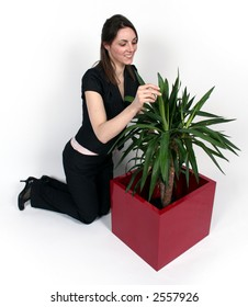 Woman and a plant