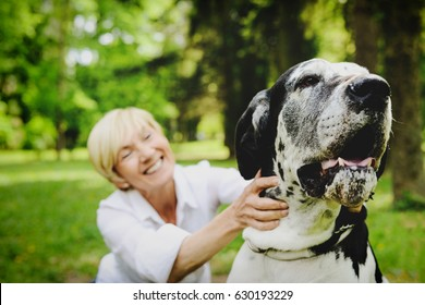 Woman Playing with her Pet - The Great Dane