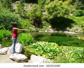 Woman pointing towards a pond in Berkeley, California. Summer 2011.
