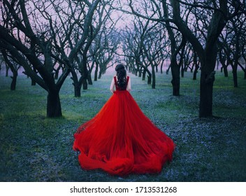 woman princess walk enjoy autumn forest nature back view. Lady Witch queen brunette wavy hair. Red vintage luxury tulle fluffy magnificent dress long train. spring park garden black bare tree trunks