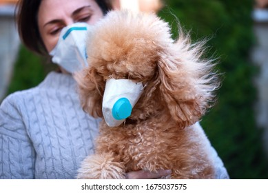 Woman in protective face mask looking at a dog wearing a medical mask too.  COVID-19 is dangerous for pet concept.