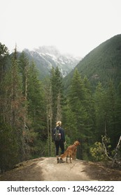 Woman and puppy hiking up a mountain in North Cascades National Park