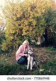 woman with a puppy husky on a wood background with yellow leaves.  Autumn landscape