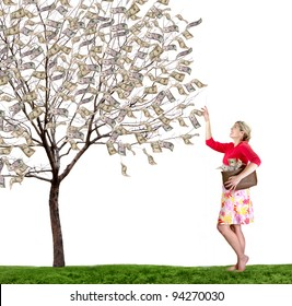 a woman reaching up picking money off a tree on white background