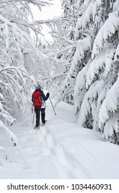 Woman with red backpack snowshoeing in a deeply snow-covered forest. Bavaria, Germany