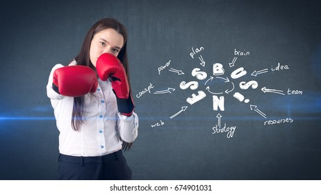 Woman in red boxing gloves standing near wall with a business idea sketch drawn on it. Concept of a successful business.