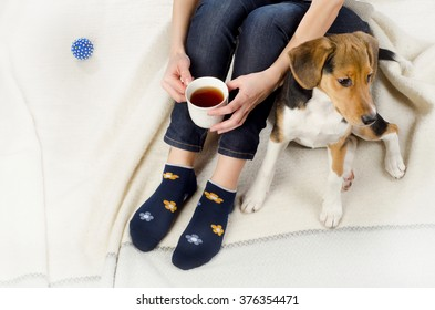 Woman relaxing with puppy and cup of tea