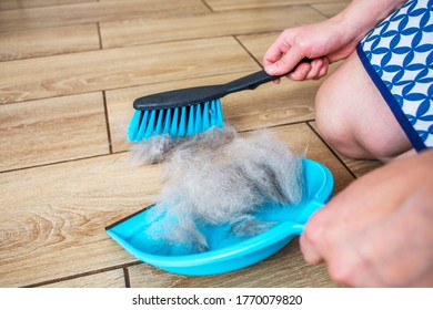 A woman removes dog hair after molting a dog with a dustpan and broom at home. Cleaning dog hair at home. Pet care.
