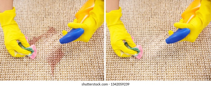 Woman removing wine spot, closeup. Carpet before and after cleaning