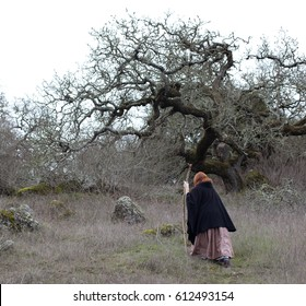 A woman in renaissance clothing walking on a rocky path near the woods.