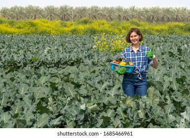 woman resting after work in the field and holds a basket with harvested vegetables. woman working on an agricultural field on a sunny day