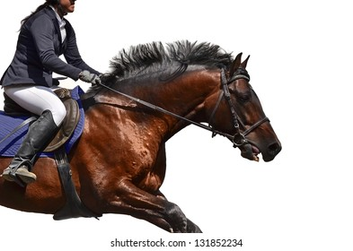 Woman riding brown race horse. Isolated on white.