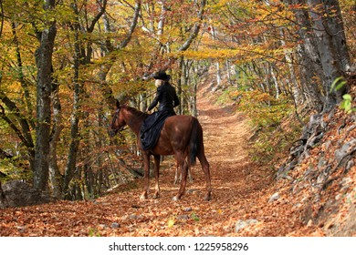 Woman riding a horse in the autumn forest