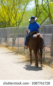 Woman Riding Horse on Trail