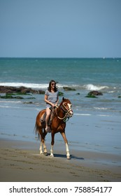 Woman riding on a horse along the ocean shore on a beautiful sunny day