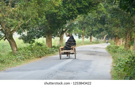 A woman riding on a three wheeler in the streets unique photo