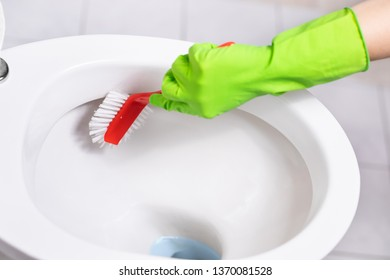 Woman with rubber glove is cleaning toilet bowl using brush