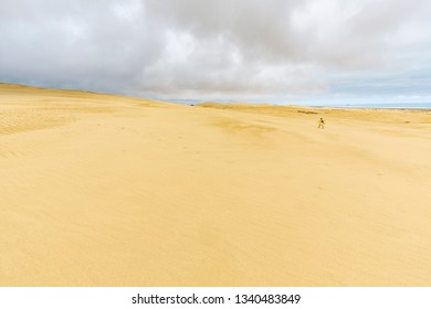Woman with sandboard walking Giant sand dunes, Te Paki, Northland, North Island, New Zealand