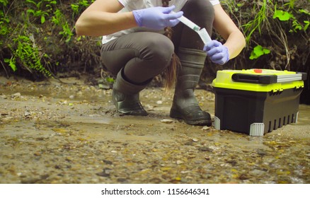 Woman scientist environmentalist sitting near the creek. She taking sample of water and pouring it into the test tube.