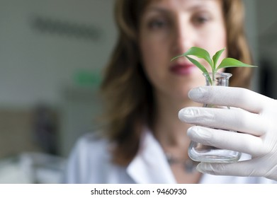 woman scientist watching a plant in test tube