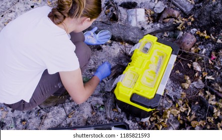 Woman scientists ecologists working at the place where the forest burned down. She is getting coal sampels. Field work