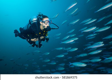 Woman scuba diver exploring sea deepness. Underwater life with beautiful fish. Indian ocean, Maldives