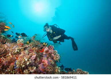 Woman scuba diver exploring sea bottom. Underwater life with beautiful corals and lots of colored fish