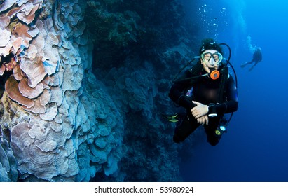 woman scuba diver on a wall dive