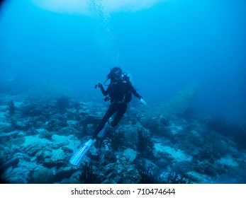 Woman scuba diver under blue water with school of snapper fish