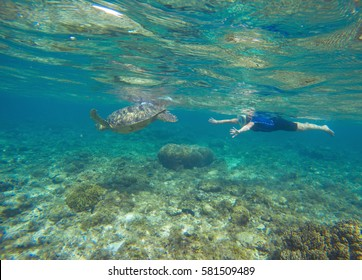 Woman with sea turtle underwater photo. Green turtle with swimming girl in full face mask and snorkeling wear. Exotic sea animal. Tropical vacation sport activity. Sea tortoise in nature. Water sport