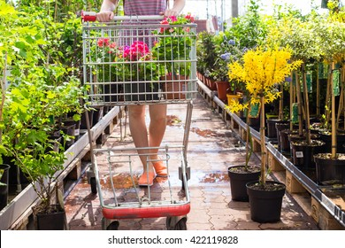 Woman with shopping cart in garden center