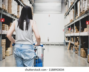 woman shopping and home interior job concept from backside of girl in blue jean with cart shopping in hardware store for support her construction job and lifestyle