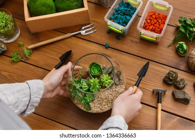 Woman showing master class on making florarium in glass jar with various tools on table