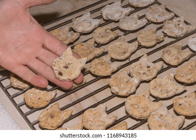 Woman shows homemade dog biscuits on oven grid