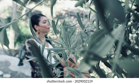 A woman sits behind the green olive leaves.
